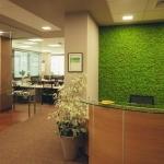 interioren mah-ofis